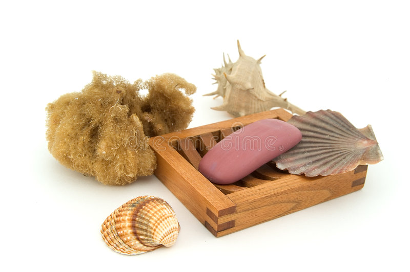 Soap with natural sponge and shells. royalty free stock photography
