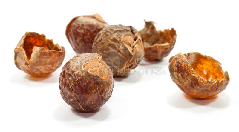 Download Soap nuts stock photo. Image of white, cleaning, isolated - 17886362