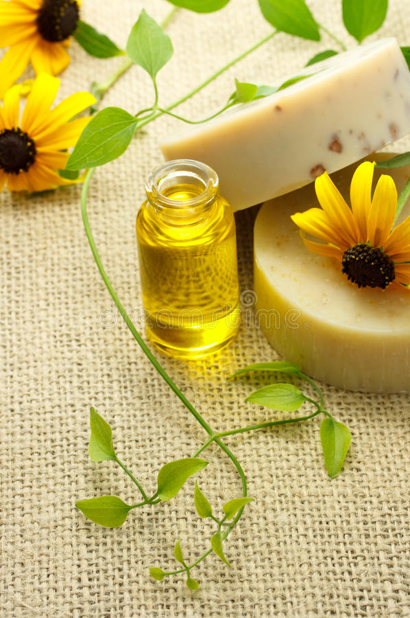Soap and oil with cone flowers stock photography