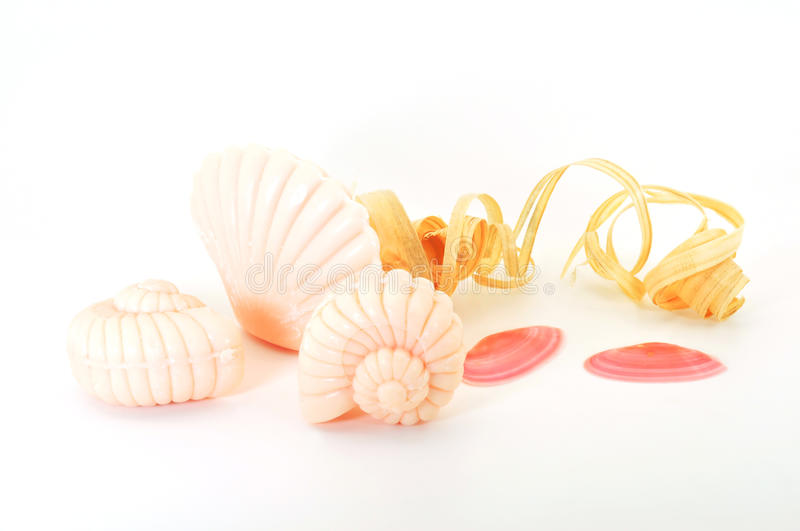 Download Soap shells stock photo. Image of body, luxury, cleanliness - 15995596