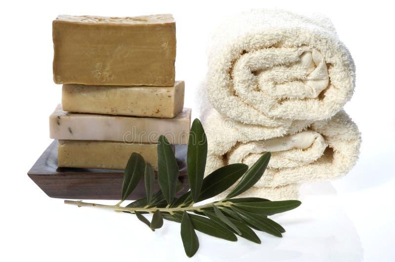 soaps naturlig olivgrön för filialen brunnsorten arkivbilder
