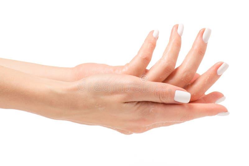 Soapy female hand foam royalty free stock photos