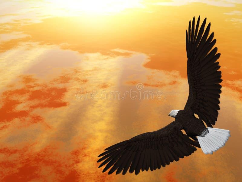 Soaring Eagle royalty free illustration