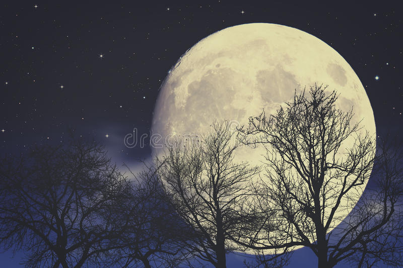 Sob a luz de lua imagem de stock royalty free