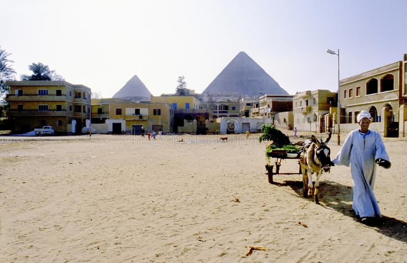 Sobborgo di Il Cairo vicino alle piramidi di Gizeh nell'Egitto immagine stock