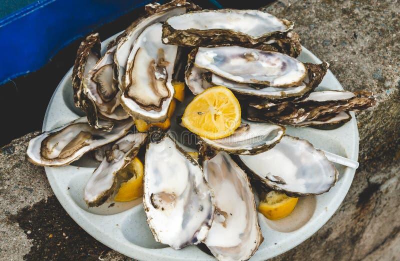 Sobras rejeitadas das ostras e do limão fotografia de stock royalty free