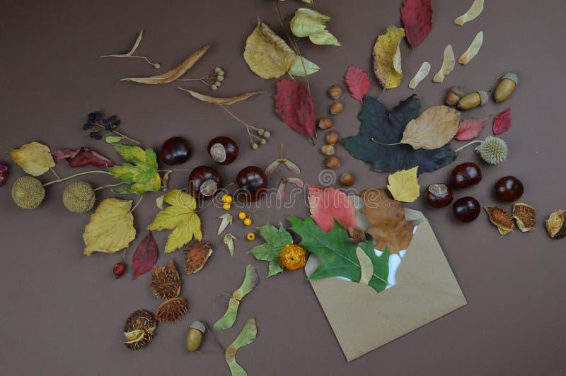 Sobre con saludos del otoño fotos de archivo