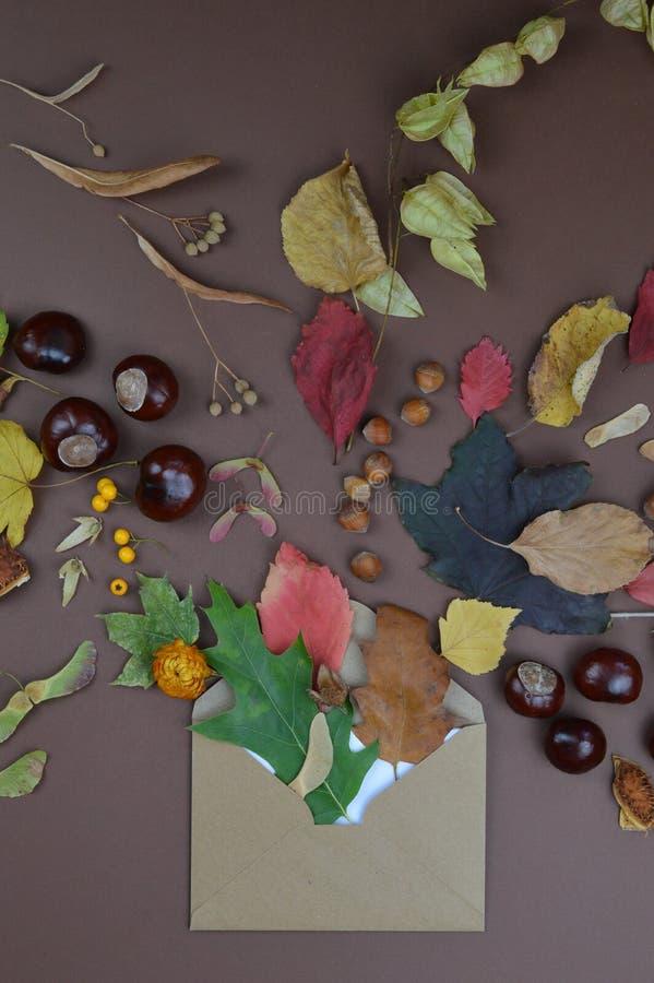 Sobre con saludos del otoño imagen de archivo libre de regalías