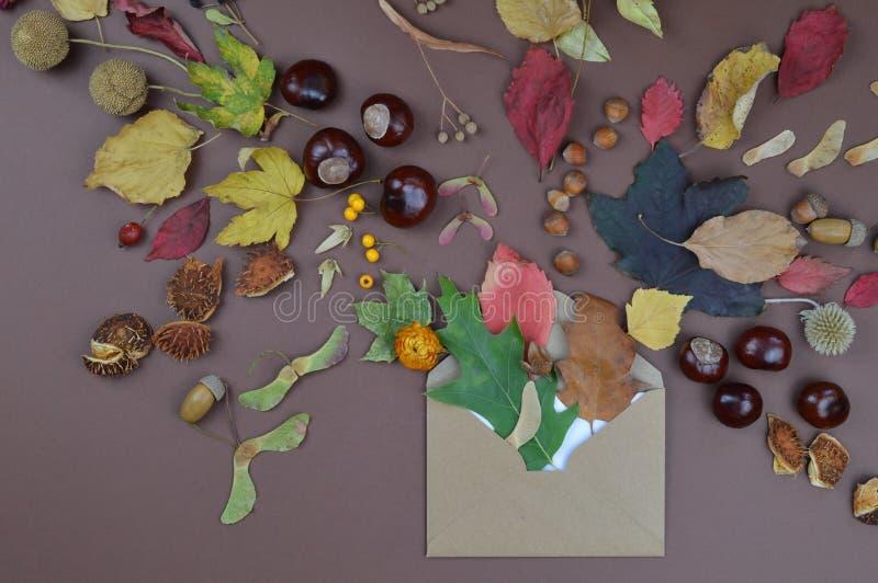 Sobre con saludos del otoño foto de archivo libre de regalías