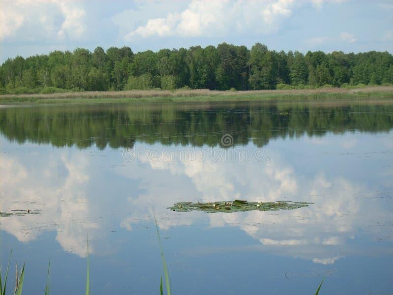 Sobre el lago imágenes de archivo libres de regalías