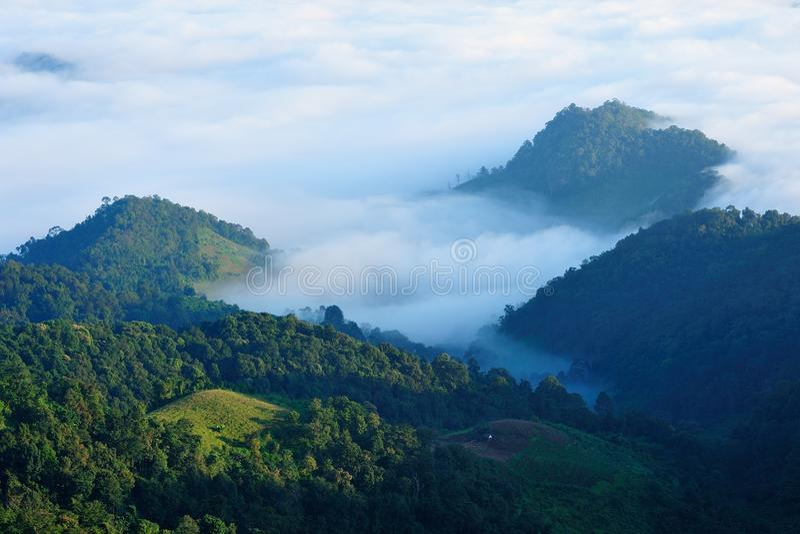 Sobre la niebla foto de archivo