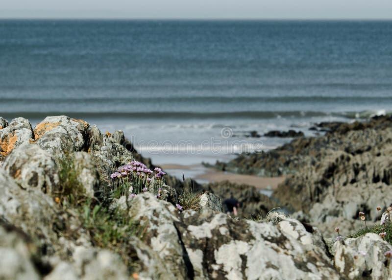 Sobre las rocas al mar imagen de archivo libre de regalías