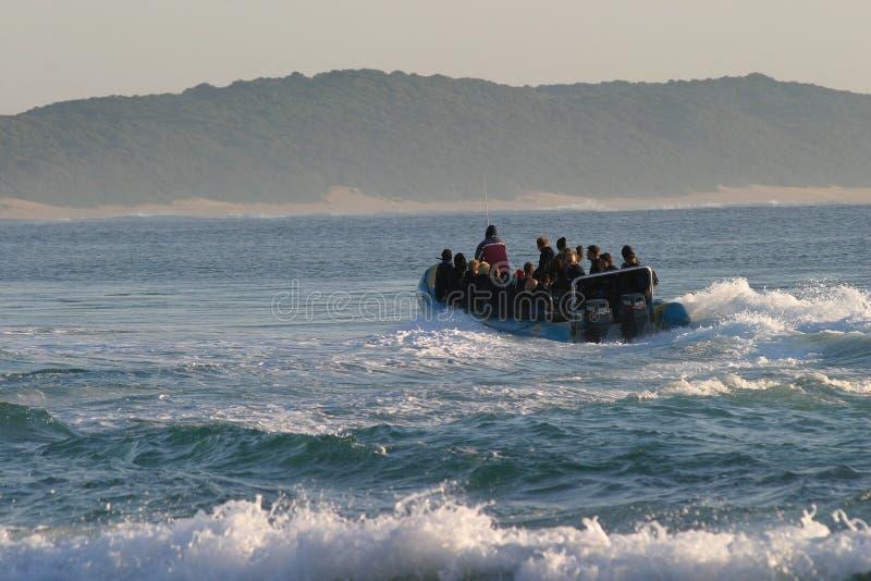 Download Sobre o recife imagem de stock. Imagem de scuba, disjuntores - 110101