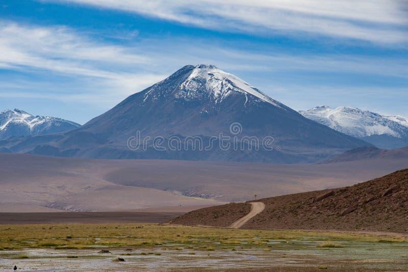 Sobremesa de Atacama foto de stock royalty free