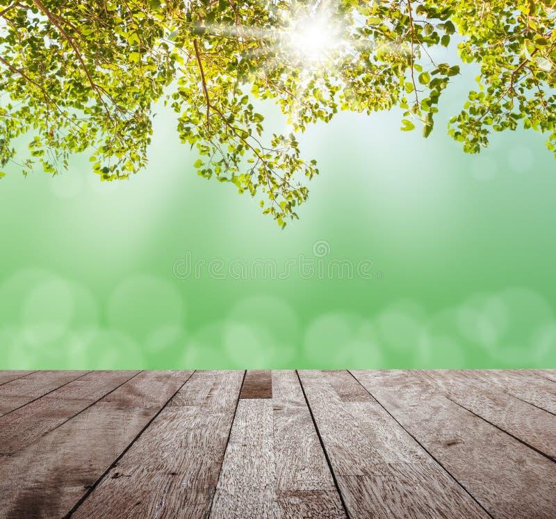 Sobremesa de madera en árbol verde con el bokeh ligero borroso foto de archivo libre de regalías
