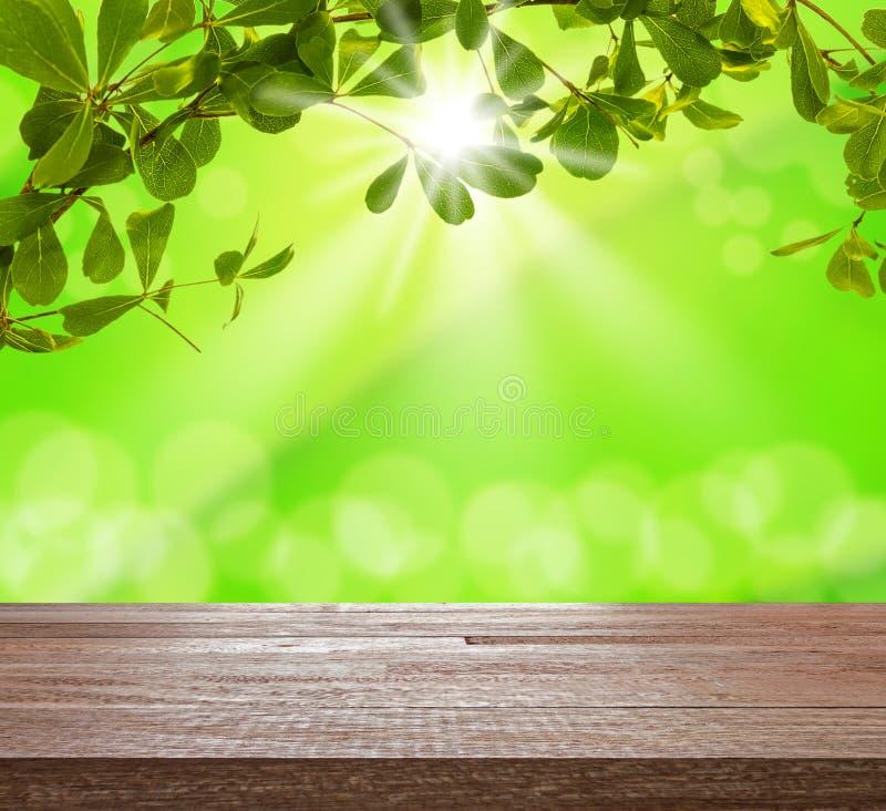 Sobremesa de madera en árbol verde con el bokeh ligero borroso imágenes de archivo libres de regalías