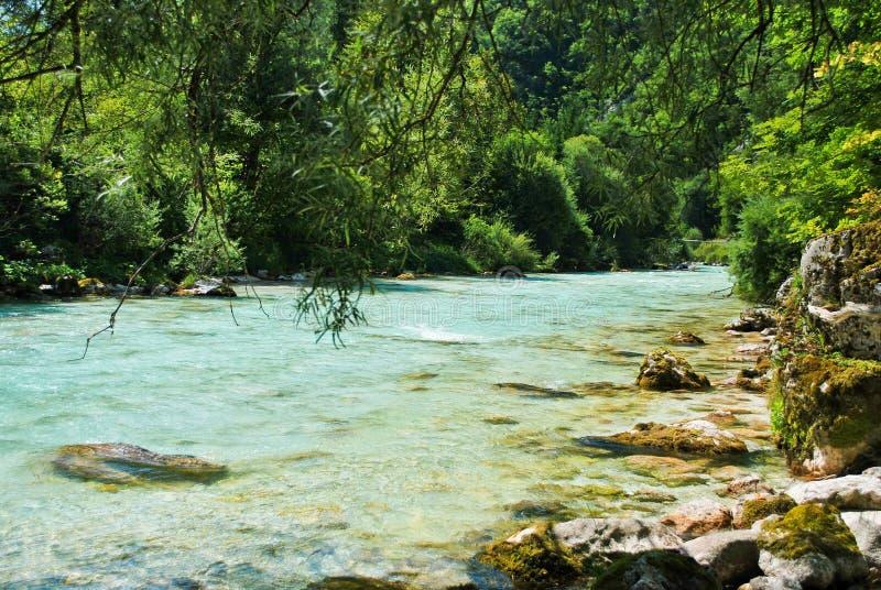 Soca river royalty free stock photo