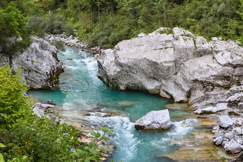 Soca river near Kobarid, streaming through the lush green forest in Slovenia. stock image