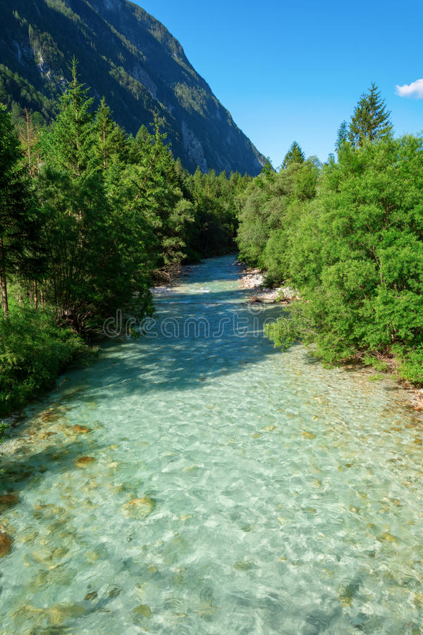 Soca river and trees stock photography