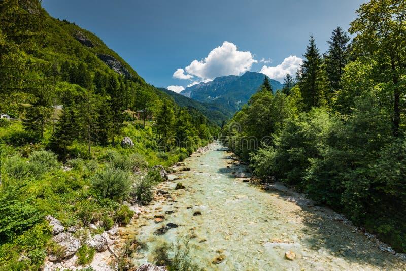 Soca river in Triglav Park, Slovenia.  royalty free stock image
