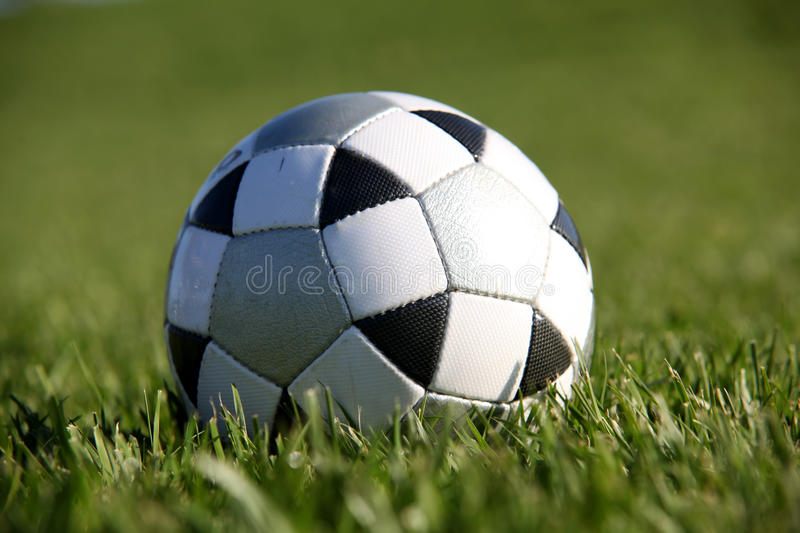 Soccer Ball. White and black soccer ball on the grass stock images