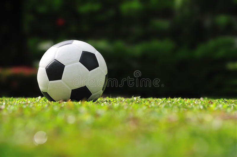 Soccer ball. On green field stock photography