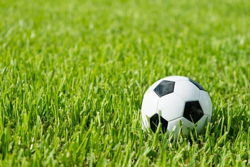 Soccer Ball Futbol on Grass. Black and white traditional soccer ball football futbol on grass stock images