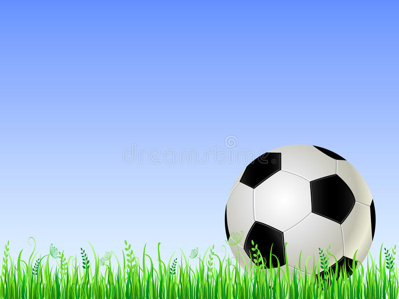 Download Soccer ball on green grass stock vector. Image of entertainment - 21568677