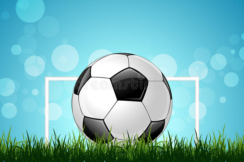 Soccer Ball in Green Grass