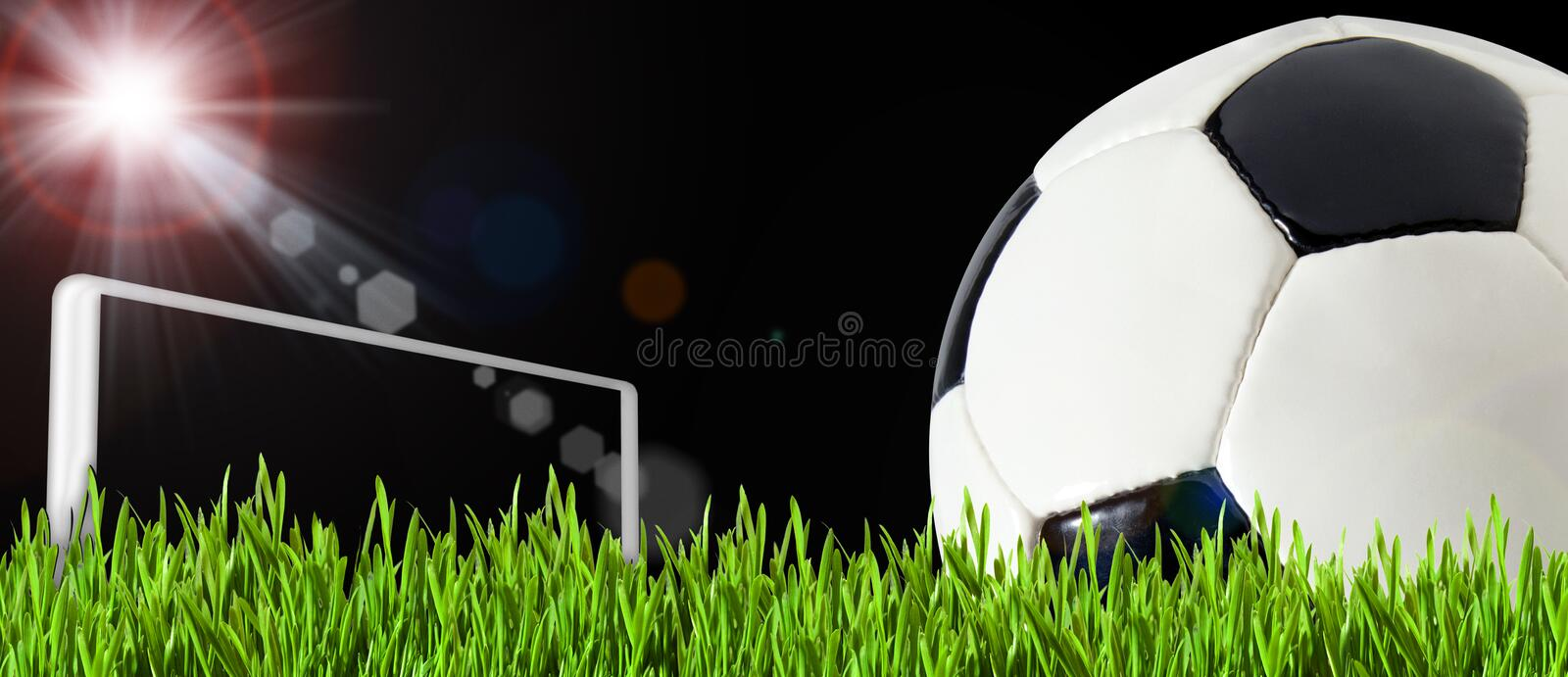 Soccer Ball On The Green Play Field Royalty Free Stock Images