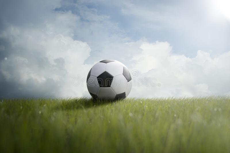 Soccer ball on the lawn royalty free stock photos