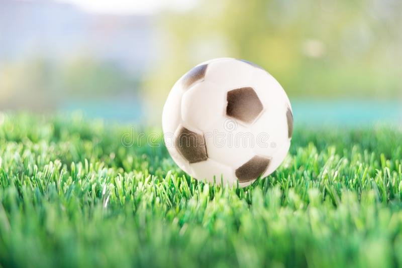 Soccer ball on the lawn stock photo