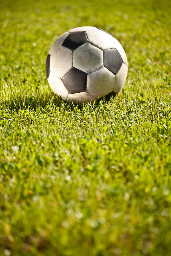 Free Soccer Ball On Grass Royalty Free Stock Images - 19986819