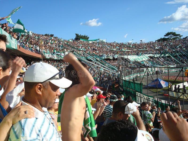 Soccer fans stock image