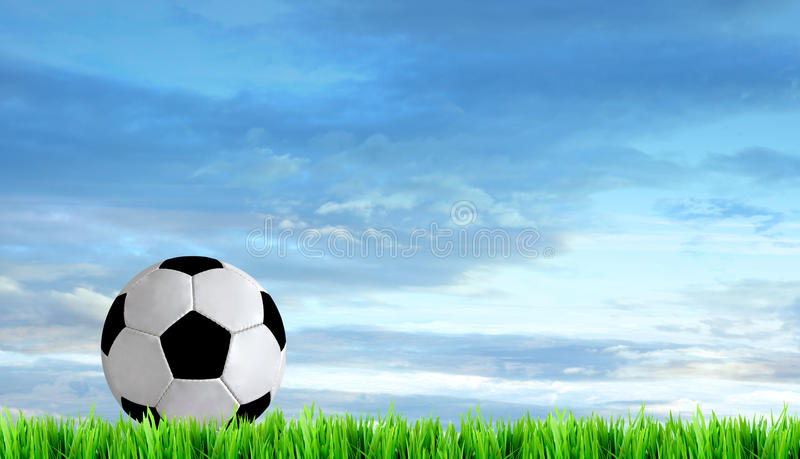 Soccer field. And beautiful blue sky stock photography