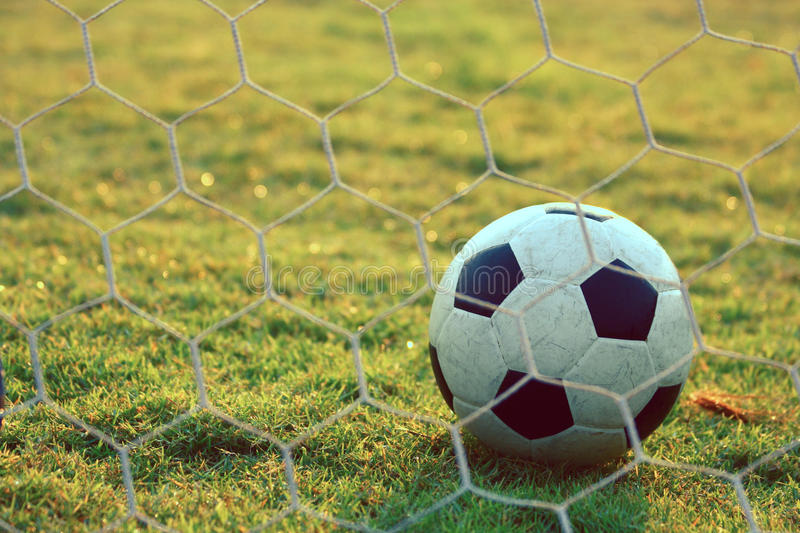 Soccer football in Goal net with green grass field stock photography