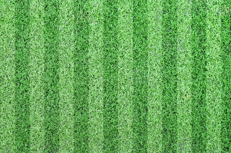 Soccer football grass field royalty free stock image
