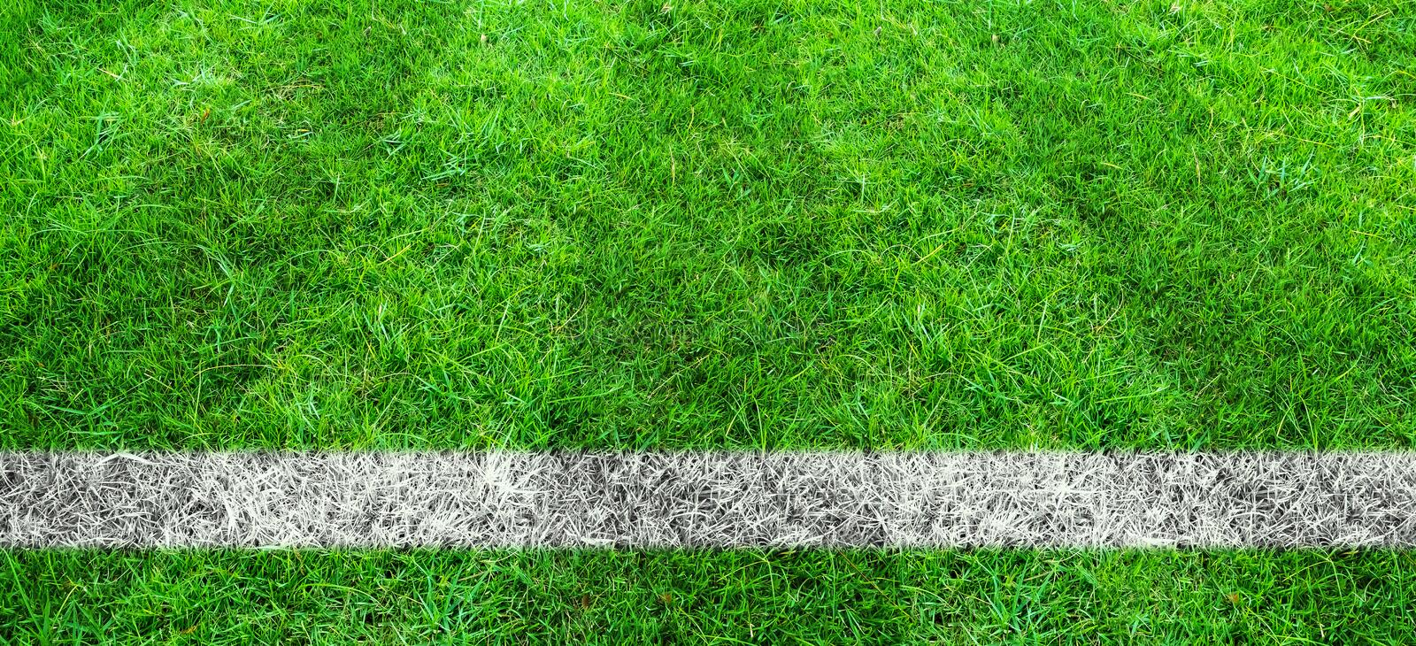 Soccer line in green grass of soccer field. Green lawn field pattern for background. Soccer line in green grass of soccer field. Green lawn field pattern for stock photo