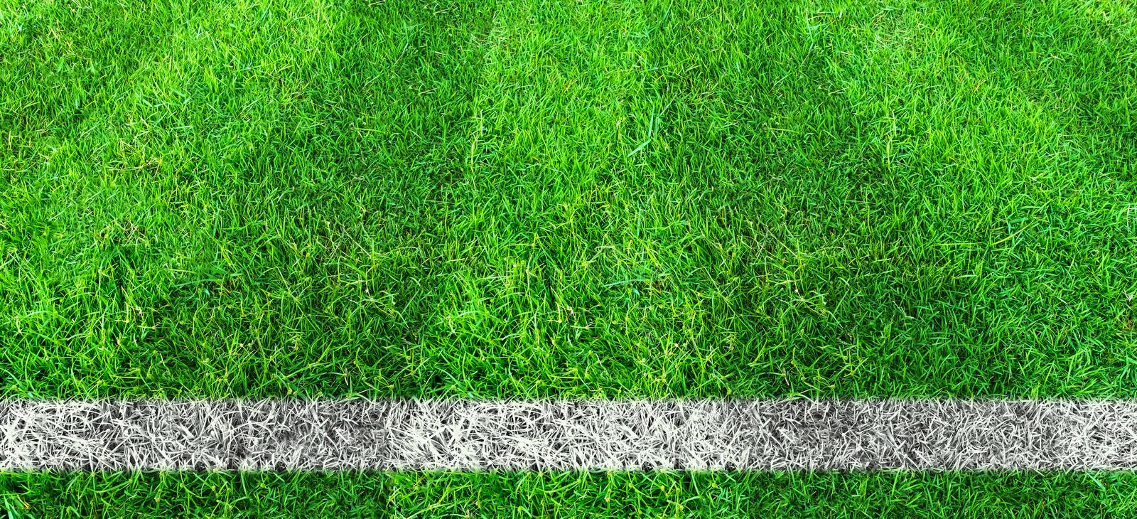 Soccer line in green grass of soccer field. Green lawn field pattern for background royalty free illustration