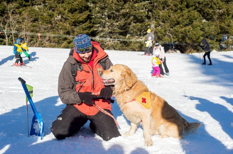 Soccorritore ed il suo cane di servizio immagine stock libera da diritti