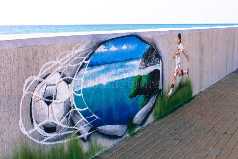 Sochi Fotboll royaltyfria foton