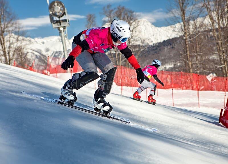 Sochi 2014 - parque olímpico, Roza Khutor, trilha fotografia de stock