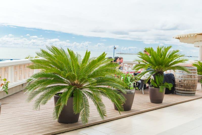 SOCHI, RUSSLAND, AM 20. APRIL 2019 - Reihen von eingemachten Palmen und Leuten an einem Tisch in einem Restaurant auf dem Strand  stockfotos