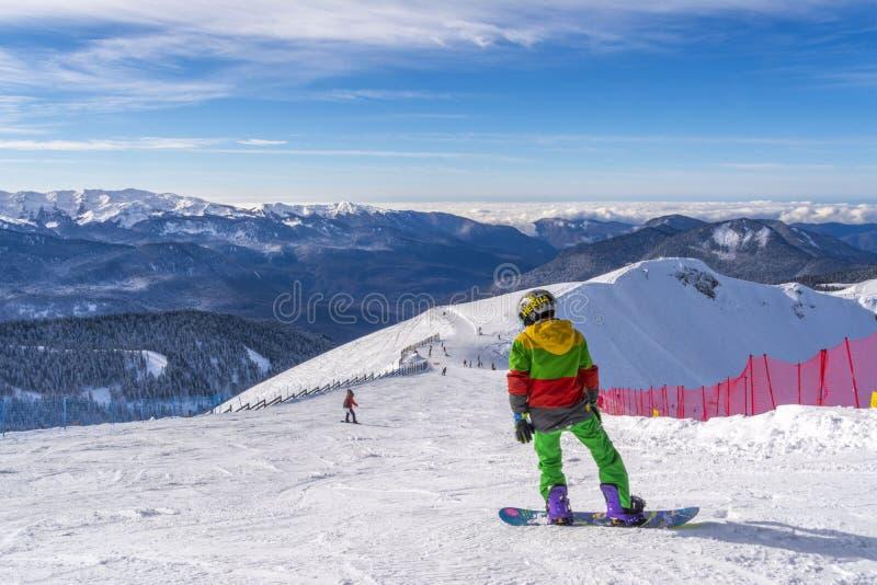 Sochi Ryssland, 10-01-2018 Rosa Khutor skidar semesterorten Snowboarderen förbereder sig för loppet som överst sitter av Rose Pea arkivbild