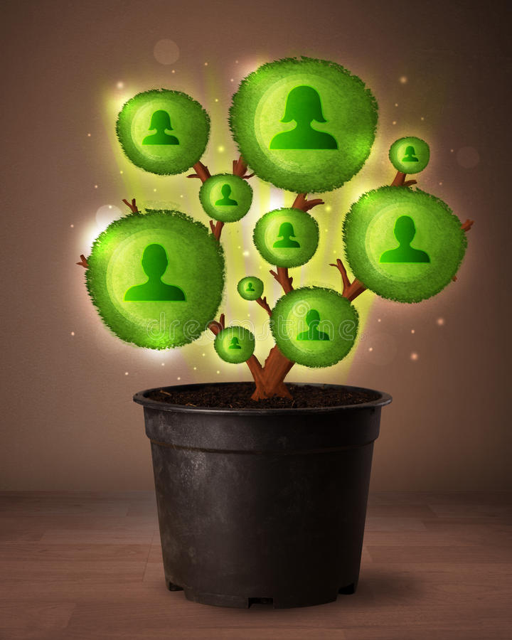 Social network tree coming out of flowerpot. Shining social network tree coming out of flowerpot stock images