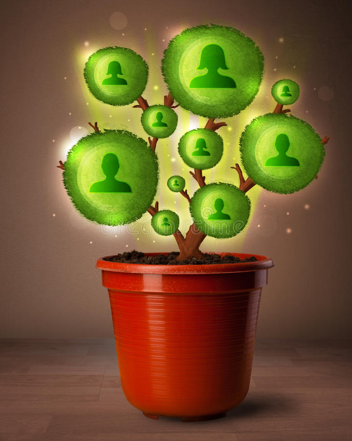 Social network tree coming out of flowerpot. Shining social network tree coming out of flowerpot royalty free stock images