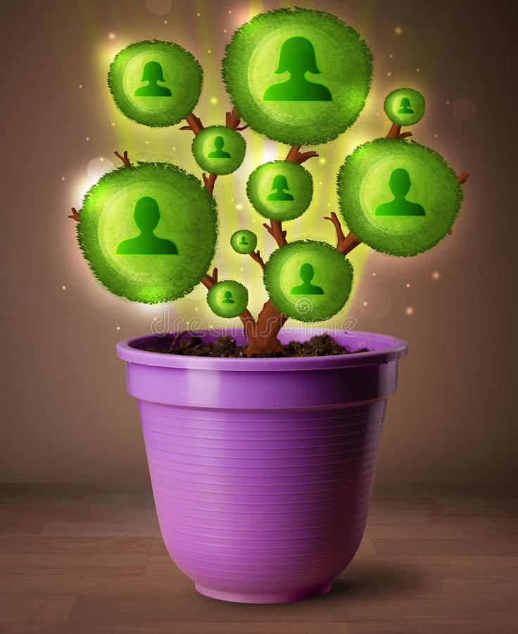 Download Social Network Tree Coming Out Of Flowerpot Stock Image - Image: 41258411