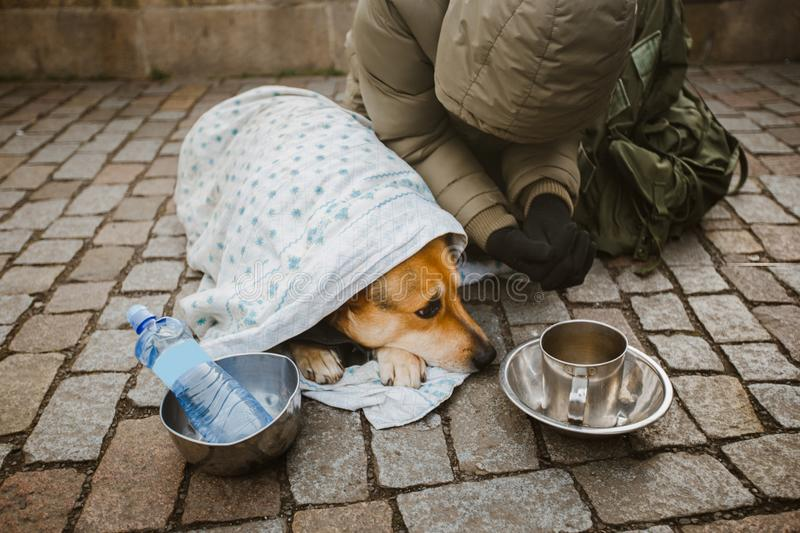 Social theme. A beggar beggar begging with a dog wrapped in a blanket to ask for help in the city of Prague is winter cold. Empty stock images