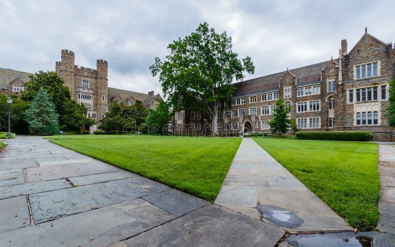 Sociologi-psykologi byggnad på Duke University royaltyfri fotografi