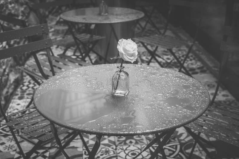 Sockeltabell och ros i en restaurang i Santiago de Compostela royaltyfria foton